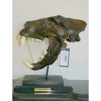 Záhradní bronzová socha - Lebka afrického lva