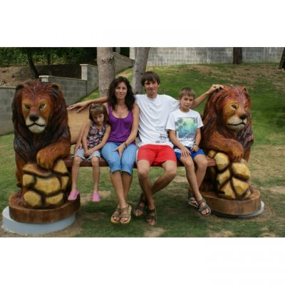 zahradní drěvěná socha - Dřevěná lví lavička II